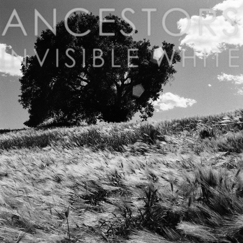 ancestors_invisible_white-500