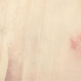 Erika-Spring-EP-album-cover