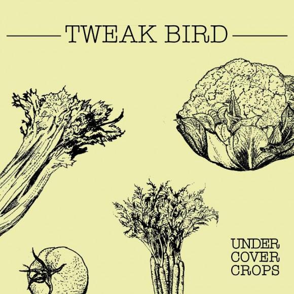 Tweak Bird