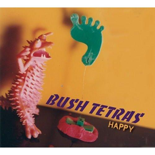 Bush-Tetras-Happy