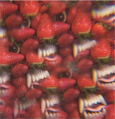 Thee Oh Sees Album cover