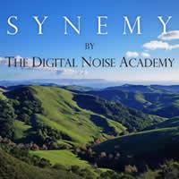 Digital_Noise_Academy_-_Synemy
