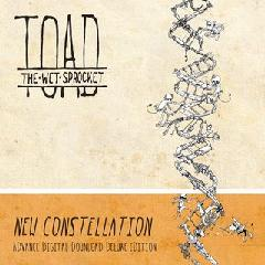 toad-the-wet-sprocket-new-constellations