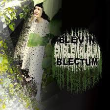 blevin-blectrum-emblem-album