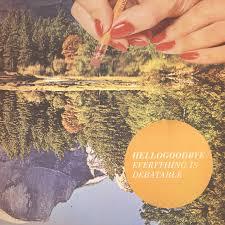 hellogoodbye-everything-is-debatable
