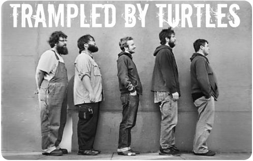 TrampledByTurtles