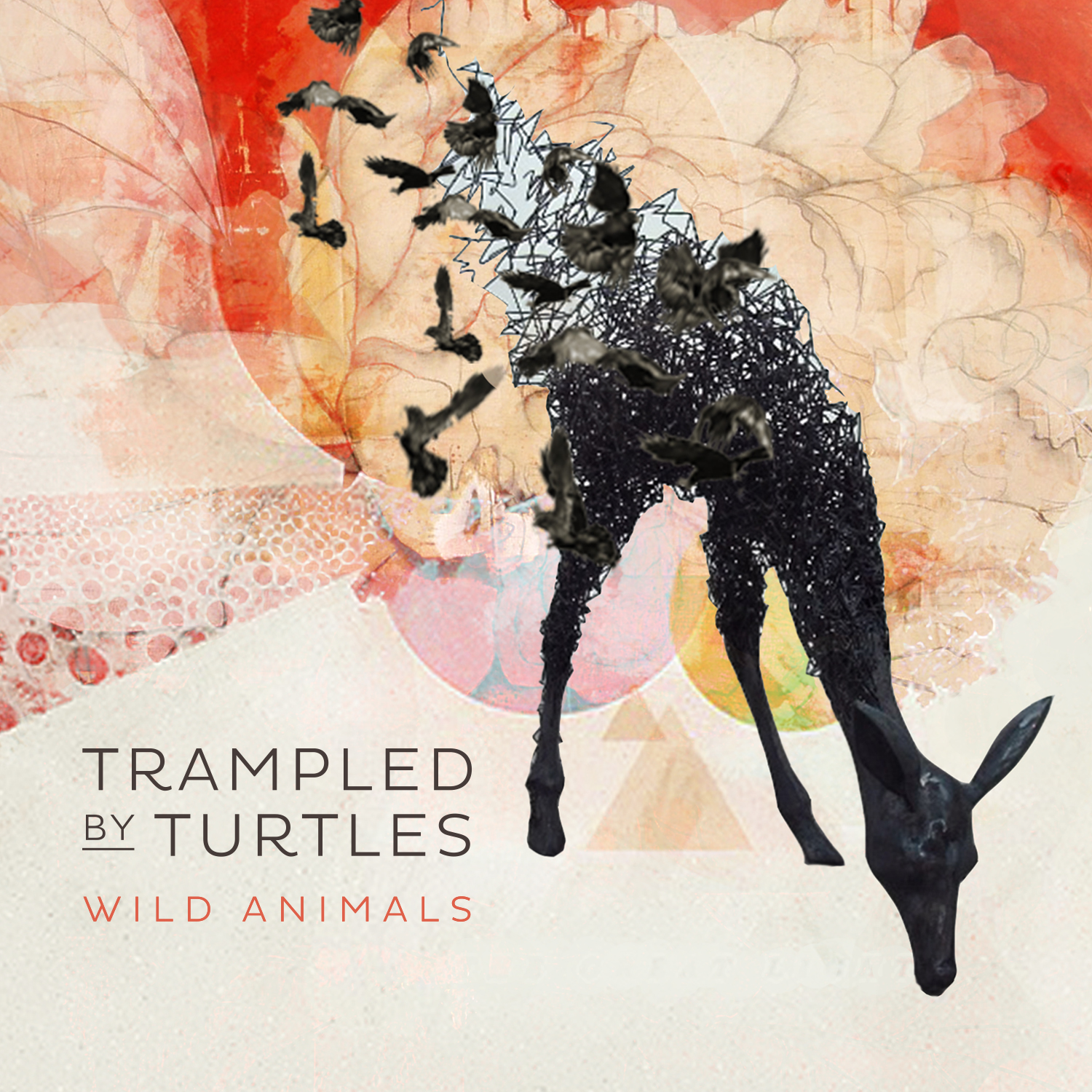 trampled-by-turtles-wild-animals