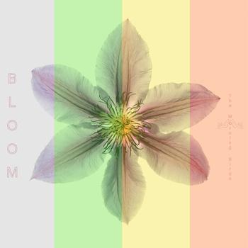 morning-birds-bloom