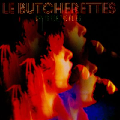 le-butcherettes-cry-is-for-flies