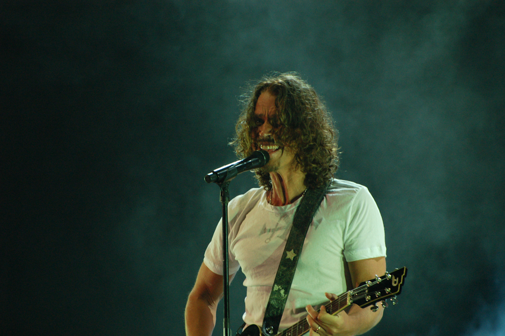 Chris Cornell's Wife Testifies Against the Opioid Crisis In Front of Congress