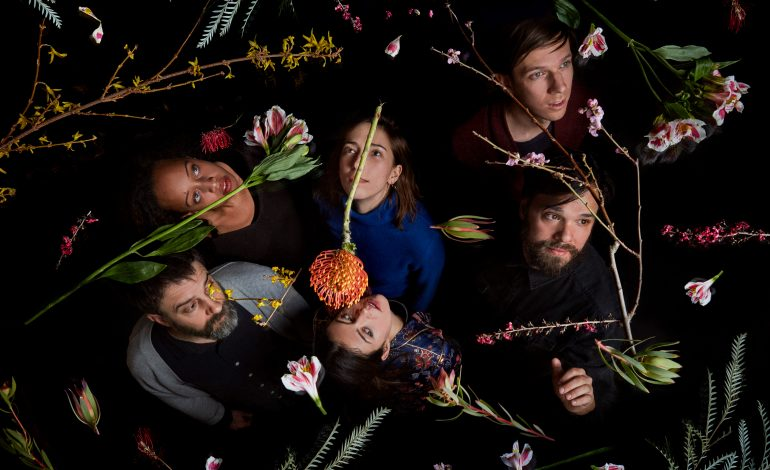 Dirty Projectors Announces Summer 2019 Co- Headlining Tour Dates With Deerhunter