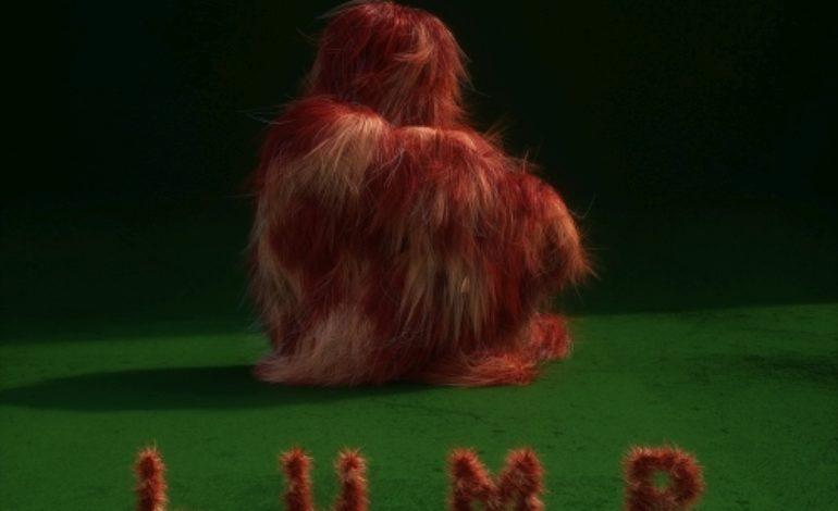 LUMP – LUMP