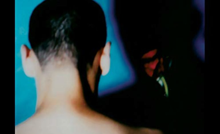 Silent Servant – Shadows of Death and Desire