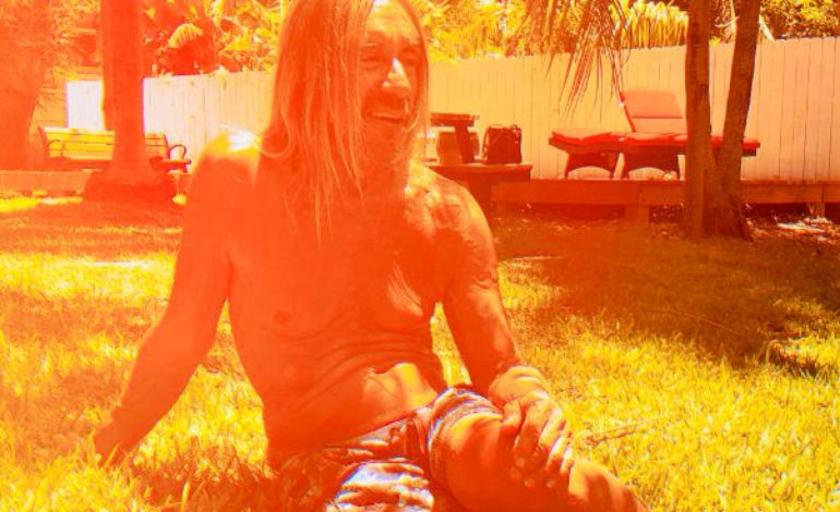 "Iggy Pop Releases New Mac DeMarco Directed Video for ""Sonali"""